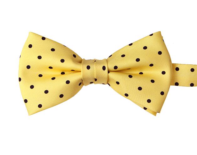 de49c16907ff Yellow & Navy Blue Polka Dot Pre-tied Silk Bow Tie - Elegant Extras